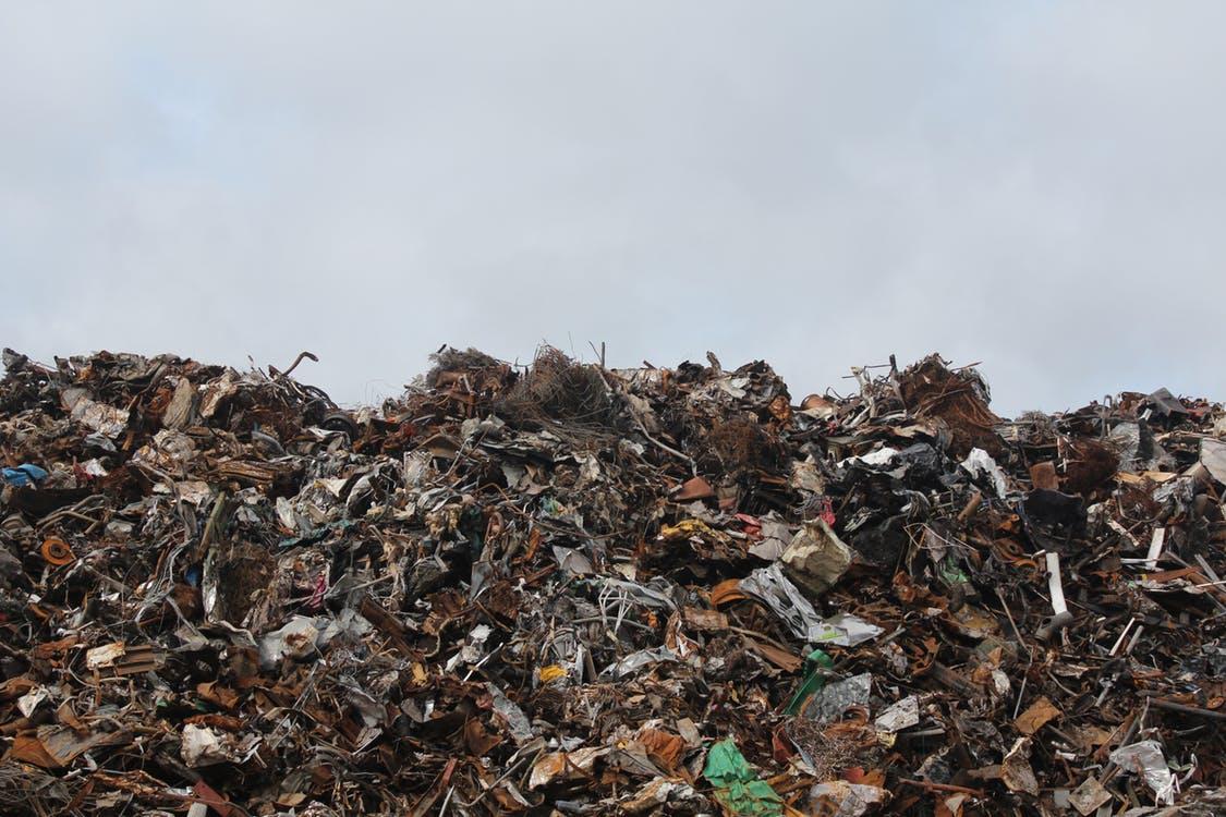 Banksia war on waste – ABC