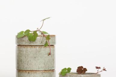 image courtesy janeheng.com