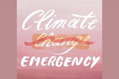 Climate Emergency Seljak brand
